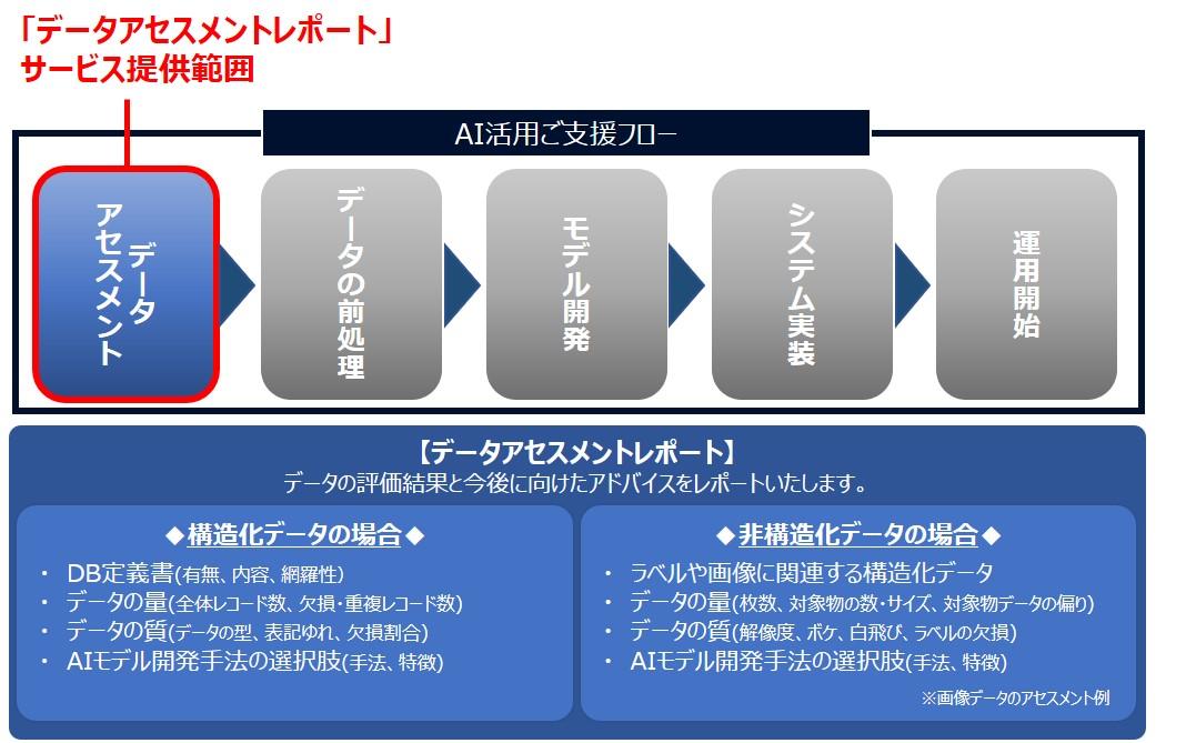 「データアセスメントレポート」のサービス提供範囲とレポート内容
